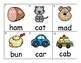 CVC Word Station/Center Activites