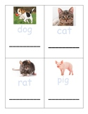 CVC Word Trace and Write