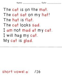 CVC Words Assessment Passages