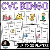 CVC Bingo Game for CVC Word Reading Practice