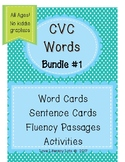 CVC Words Bundle 1.1-1.3 Aligned- With NO  Diagraphs  (No