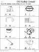CVC Words - Ending Sounds Practice