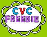 CVC Words FREEBIE
