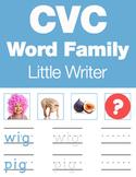 CVC Words - Little Writer (Read it, Write it, Trace it Worksheets & Games)