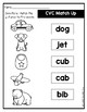 CVC Words Match Up~~~~~~~~