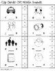 CVC Words - Middle Sounds Clip Cards - includes 29 word families