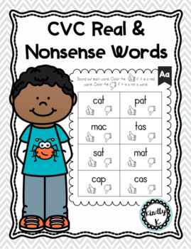 CVC Words Real and Nonsense Words , Homework Reading Practice