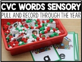 CVC Words Sensory Centers Through the Year