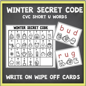CVC Words Short U-Write On Wipe Off Cards Secret Code