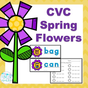 CVC Words -Station Activity
