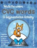 CVC Words: Winter Snow Globes