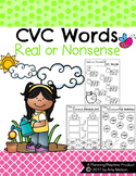 CVC Words Worksheets - Real or Nonsense