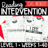 CVC Words and Sight Word Reading Intervention