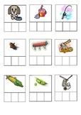 CVC Words with Phoneme Frames