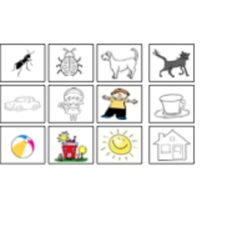 CVC/high frequency sight word activity