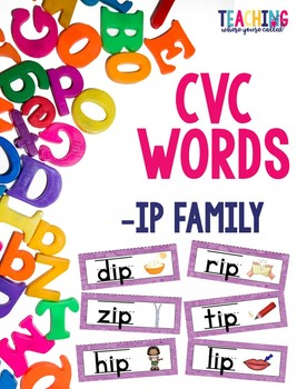 CVC -ip Words