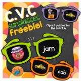 CVC puzzles freebie