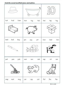 CVC short vowel u worksheet