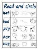 CVC short vowel worksheet