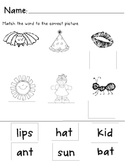 CVC word and picture match - cut, paste, and color