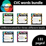 CVC words a, e, i, o, u - spelling, matching letters and picture cards