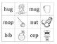 CVC words with icons
