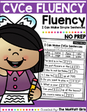 CVCe Fluency: I Can Make Simple Sentences