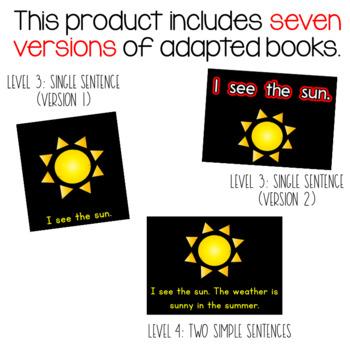 CVI Series: Summer Adapted Books