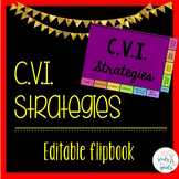 CVI Strategies Flipbook