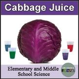 Cabbage Juice Scientific Method