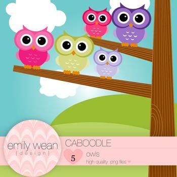 Caboodle - Owl Clip Art