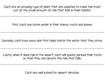 Cacti Paragraph Structure Puzzles