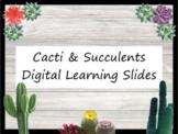 Cacti & Succulents Themed Digital Learning Slides - Editable