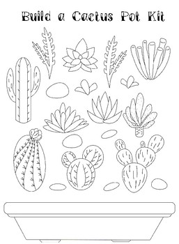 Cacti (succulents) - Activity, Reading comprehension passage and questions