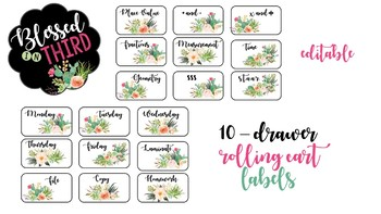Cactus 10 Drawer Rolling Cart Labels