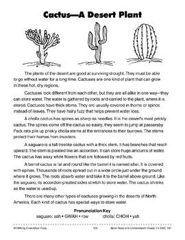 Cactus- A Desert Plant