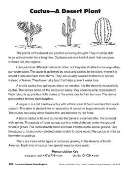 Cactus: A Desert Plant/El cacto: una planta del desierto