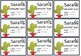 Cactus Computer Password Tags -  Classroom Theme cactus and suculent