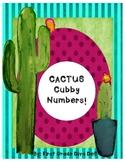Cactus Cubbies