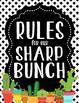 Cactus Cuties Classroom Rules Posters **editable**