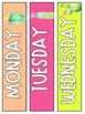 Cactus Daily Schedule Cards - EDITABLE