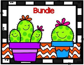 Cactus Decorative Bundle
