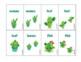 Cactus Irregular Plurals