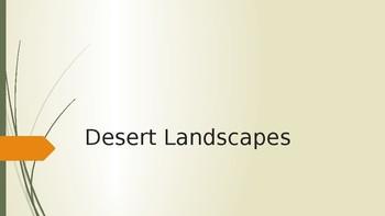 Cactus Landscapes