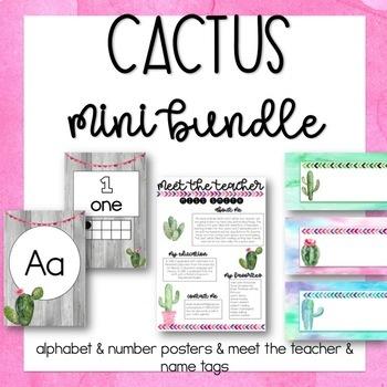 Cactus Mini Bundle