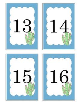 Cactus Number Flashcards 1-20