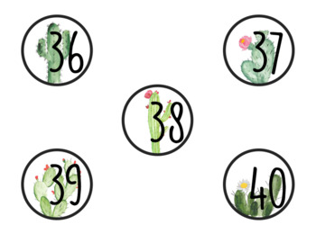 Cactus Number Labels 1-40 (Includes Two Different Sizes)