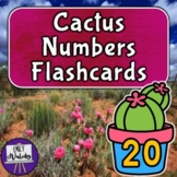 Cactus Numbers Flashcards