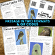 Cactus Pygmy Owl: Informational Article, QR Code Research & Fact Sort