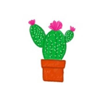 Cactus succulent. Clipart freebie